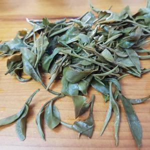 冬芽蜜香白茶