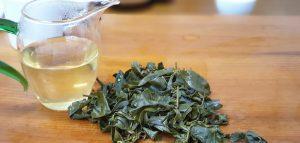 水仙烏龍茶-杉林溪特殊品種