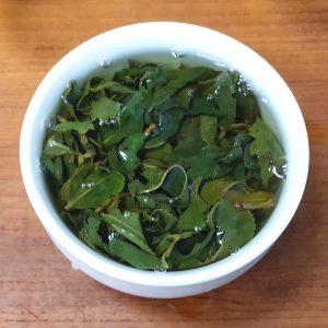 福壽山鐵觀音-春茶
